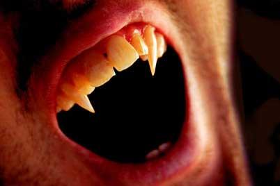 vampiro dentes presas - vampire fangs