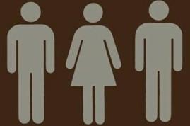 Os seres humanos foram feitos para a monogamia