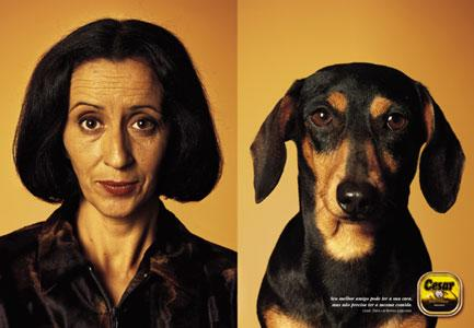 cachorro que se parece com dono