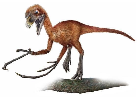 dinossauro estranho