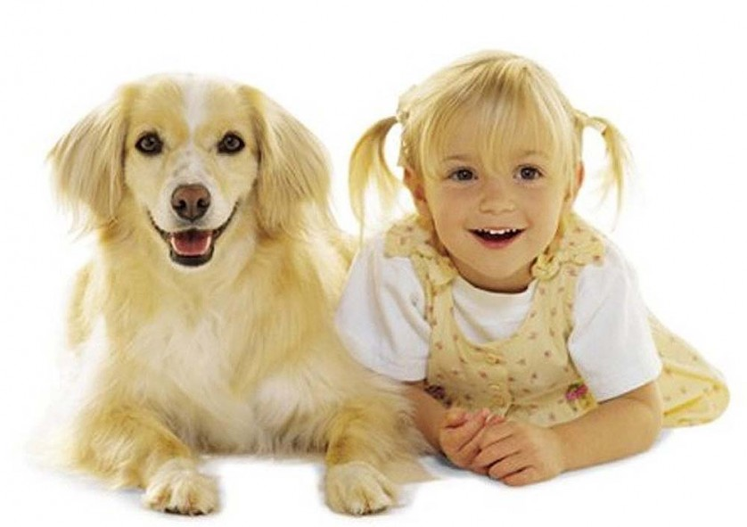 Dogs-and-Children-5