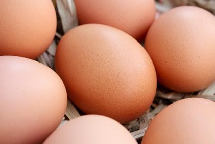 ovos-proteina