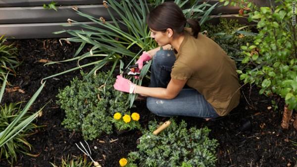 ideias jardins grandes:Estágio no Sítio dos Herdeiros: Como fazer Hortas