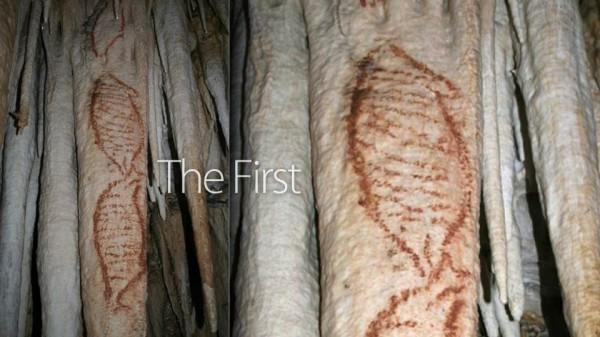Наука и искусство неандертальцев