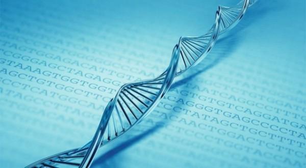 DNA tem 700 terabytes de memória em apenas um grama