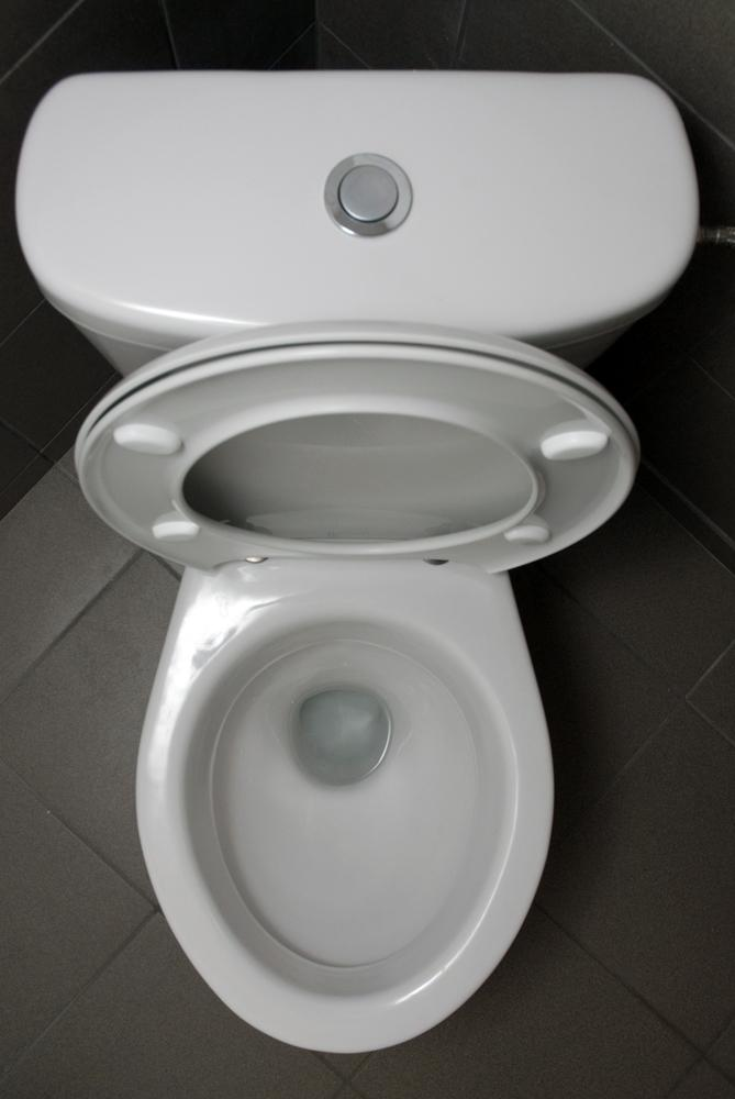 O assento do vaso sanit rio mesmo o local mais sujo da for Modelos de sanitarios