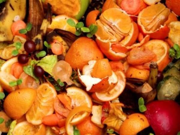 restos de comida fonte de energia