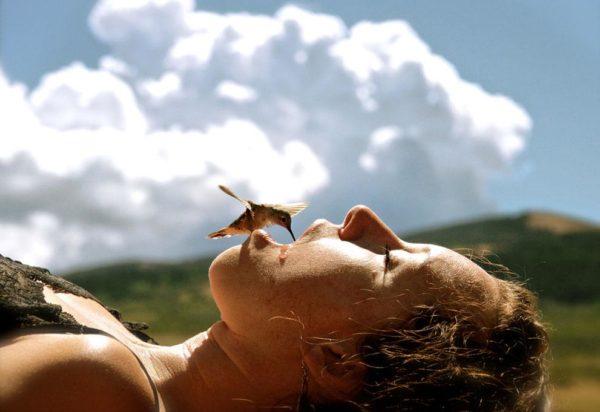 """""""Um beija-flor com muita fome bebendo da boca de uma pessoa em Wyoming (EUA) durante uma seca extrema em 2012"""" - Sundell Larsen"""