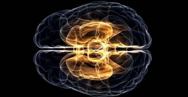 A beleza está no cérebro: estímulo elétrico pode te fazer considerar alguém mais bonito