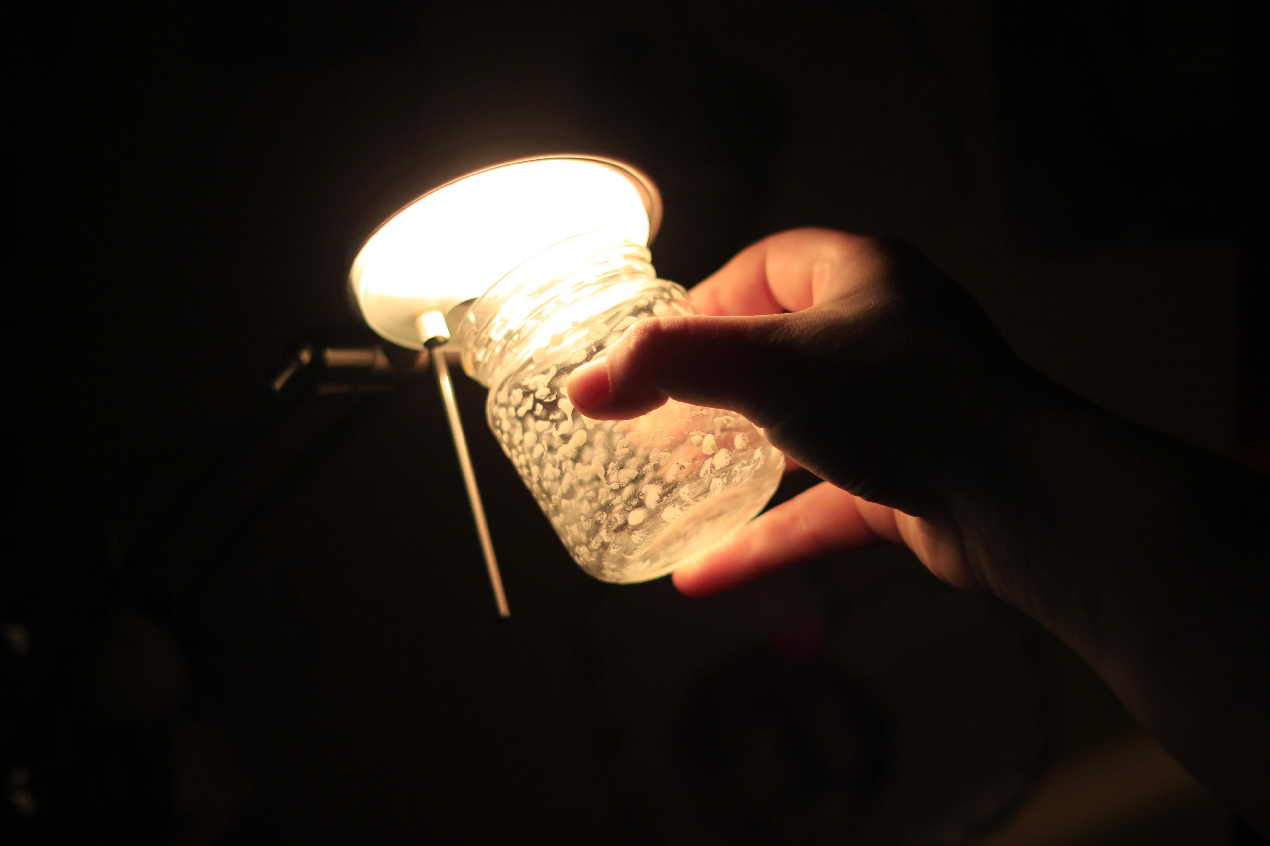 Сделать подсветку для рассады своими руками: агролампы 24