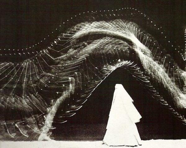 fotografias científicas do século 19