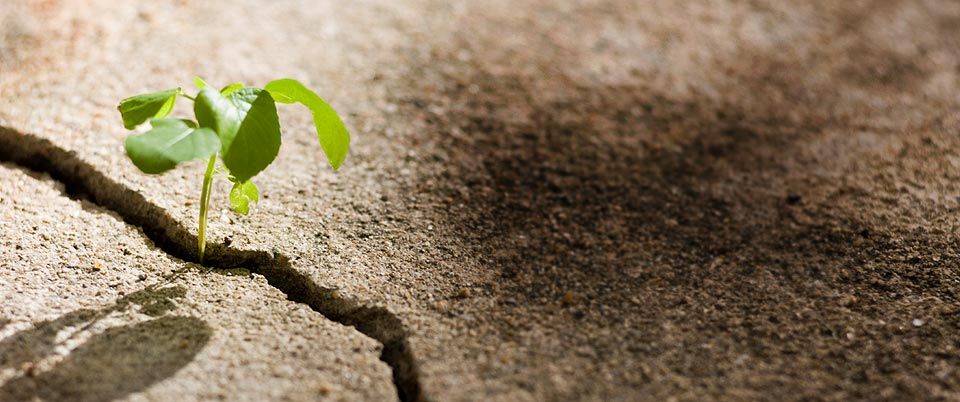 Como tornar-se mais resiliente