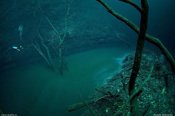 underwater-river-cenote-angelita-mexico-7