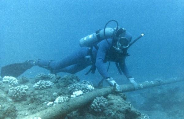 Mergulhador checando um deles debaixo do mar