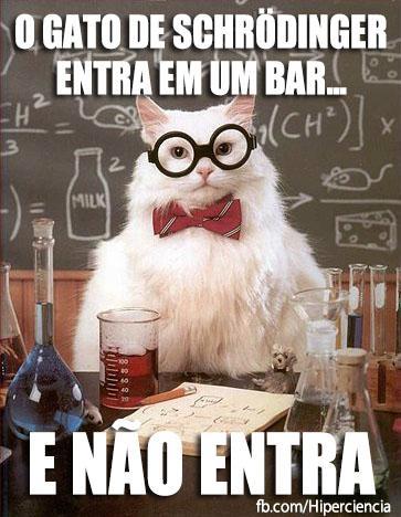 gato quimico quimica 1