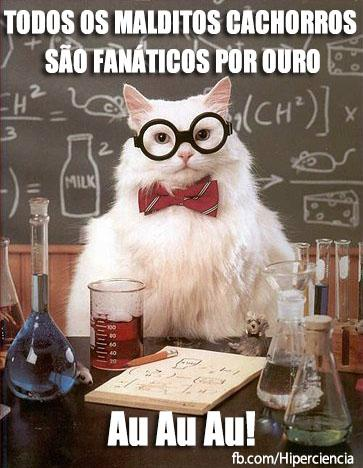 gato quimico quimica 12