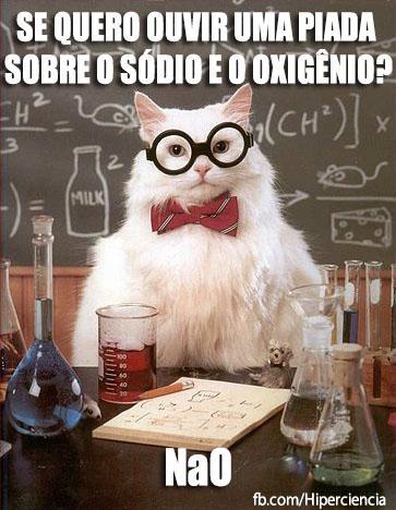 gato quimico quimica 13