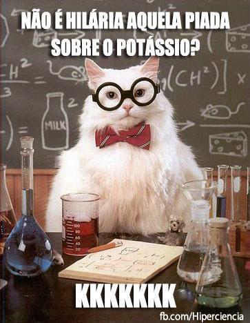 gato quimico quimica 21