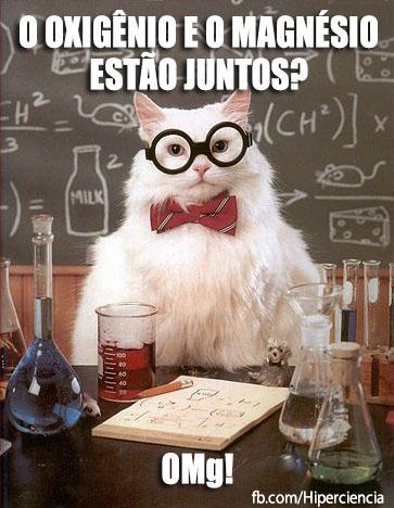 gato quimico quimica 4