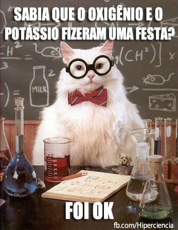 gato quimico quimica 7