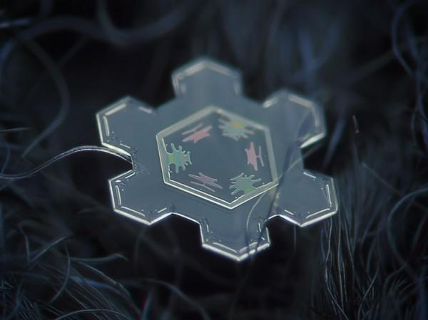 macro-photography-snowflakes-alexey-kljatov-12