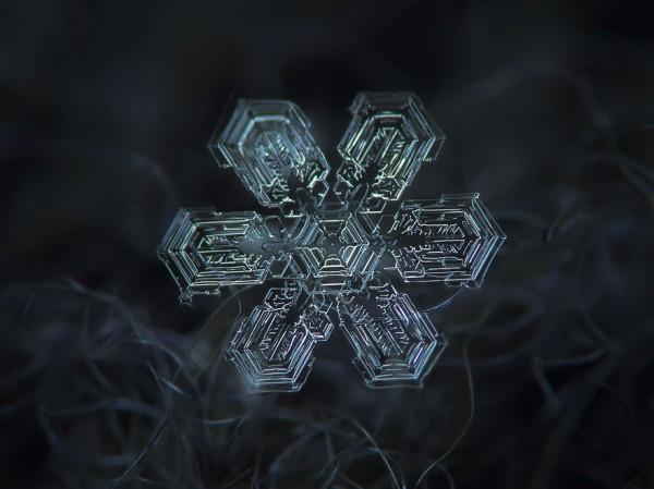 macro-photography-snowflakes-alexey-kljatov-4