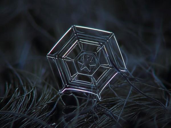 macro-photography-snowflakes-alexey-kljatov-7