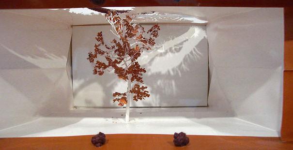 notice-forest-paper-bag-trees-yuken-teruya-15__605