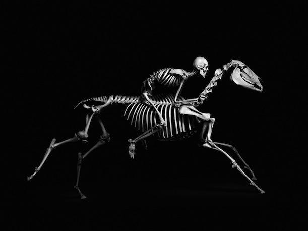 Humano montando a cavalo