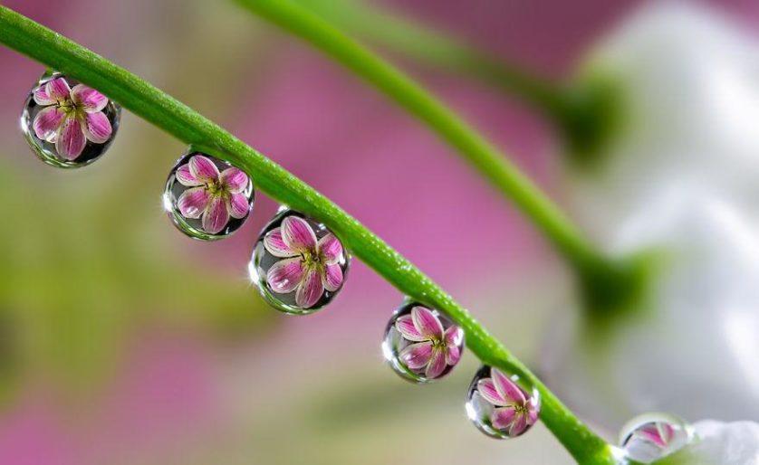 water-drops-miki-asai-1__880