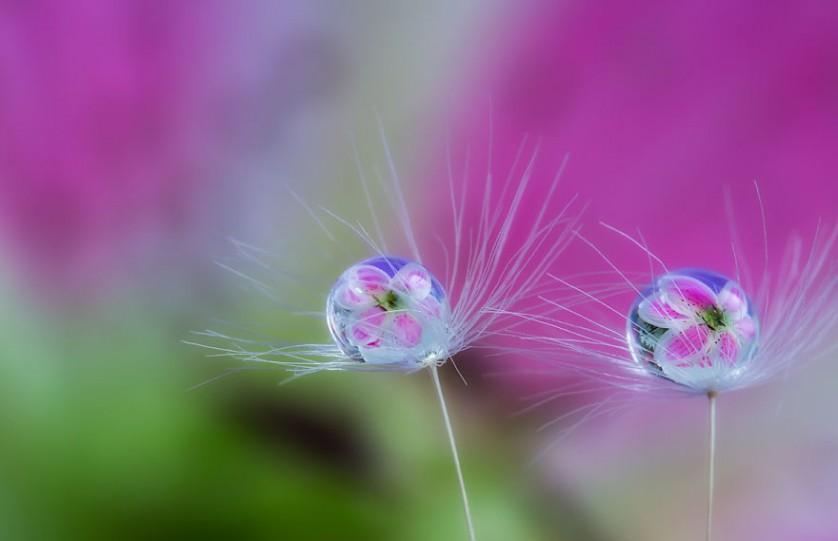 water-drops-miki-asai-7__880