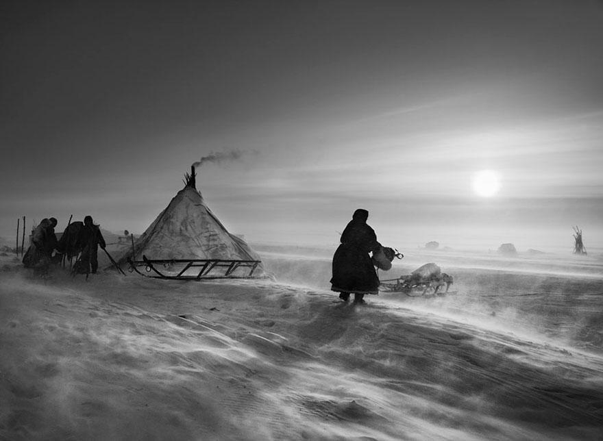 Povo Nenet vivendo nas profundezas da península Yamal, na Sibéria, dentro do Círculo Polar Ártico (2011)