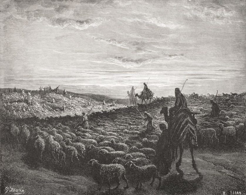 camel-bible-date-01_76407_990x742