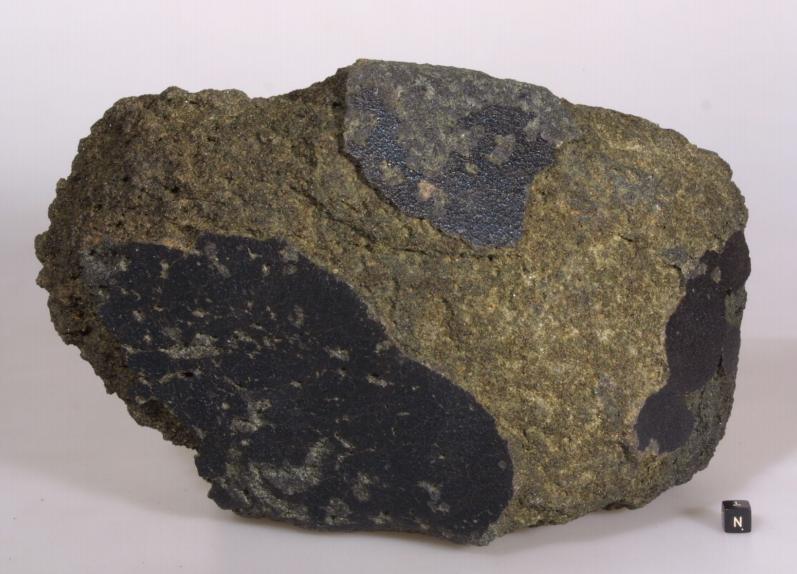 vida marte meteorito 4