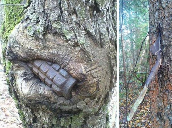Uma granada (talvez ainda funcional) aparece enfincada em uma árvore, à esquerda, e uma pá de um sapador se desintegra dentro da árvore à direita