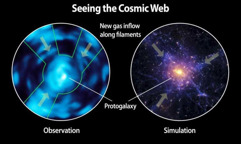 Caltechs-Cosmic-Web-Imager-Directly-Observes-Dim-Matter