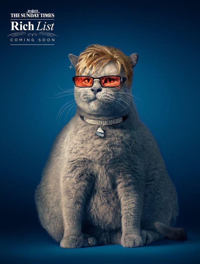 Propaganda Criativa 24 Anúncios Fofos E Engraçados Estrelando Animais