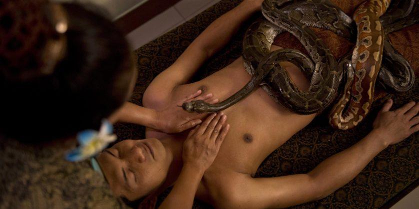 Зоо порно мужиков смотреть бесплатно онлайн видео ролики секса с животными порно видео зоофилия.