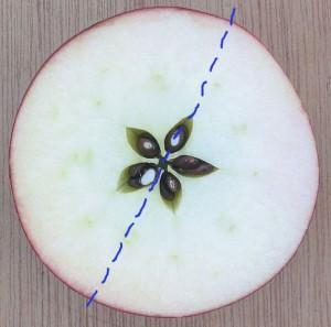 Esta foto de uma maçã fica praticamente inalterada quando refletida pela linha azul