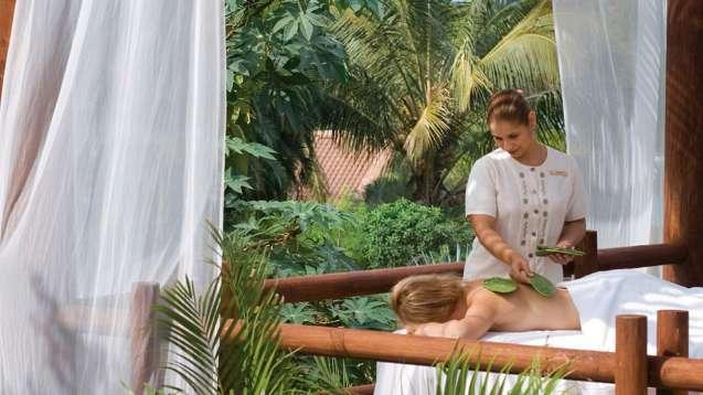 massagem com cactos