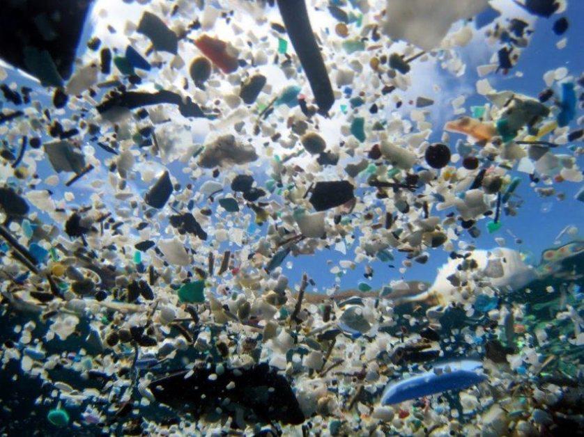 Ecologia (Conteúdo relacionado a ecologia e meio ambiente)  Plastico-nos-oceanos-2-838x628