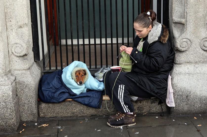 caes e moradores de rua (13)