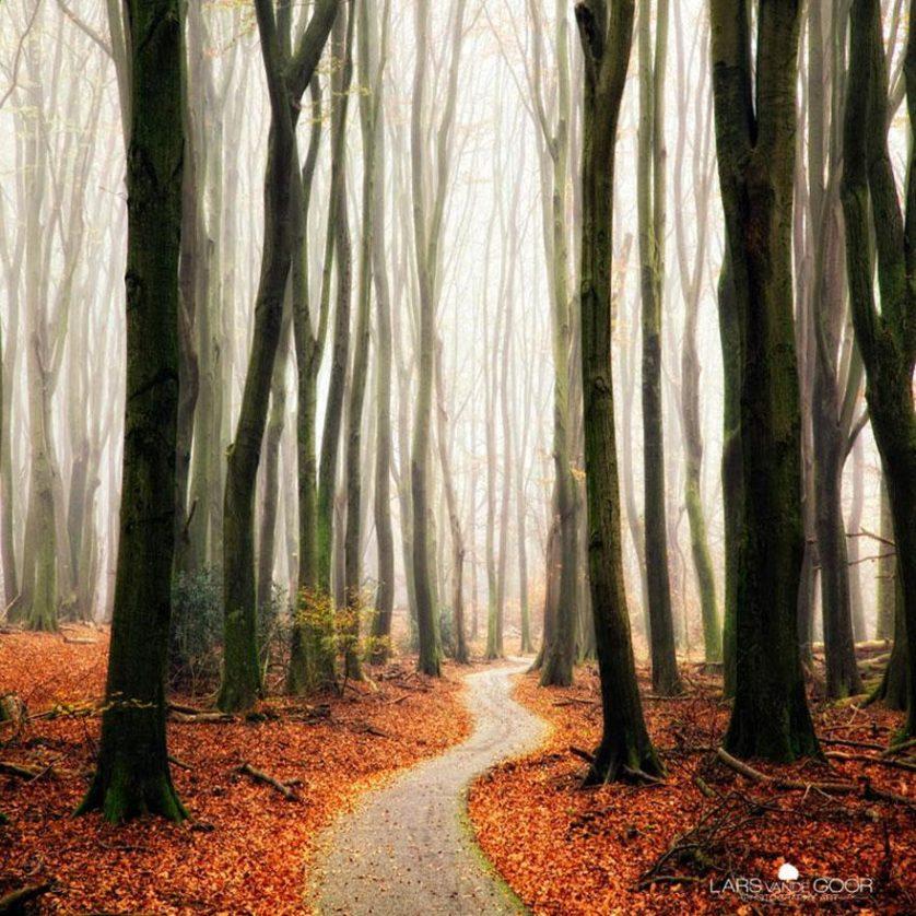 caminhos magicos 1
