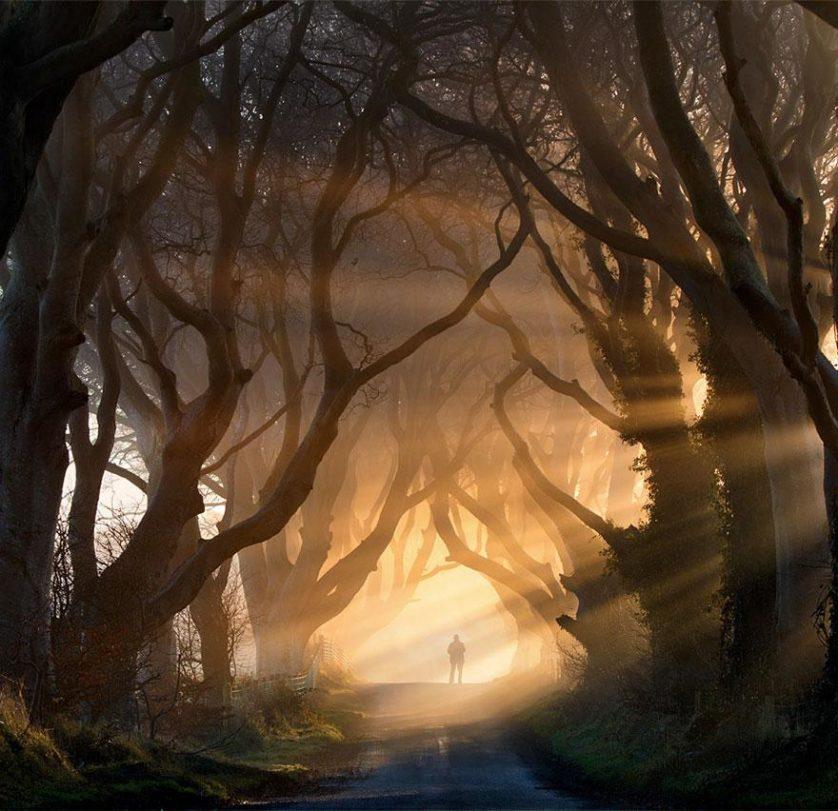 caminhos magicos 16