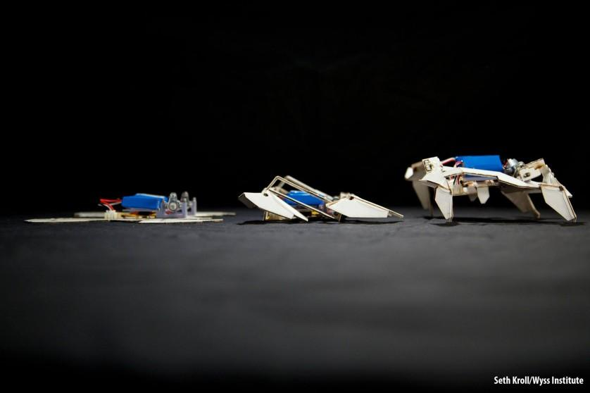 robo de origami
