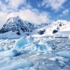 Confirmada existência de vida sob o gelo da Antártida