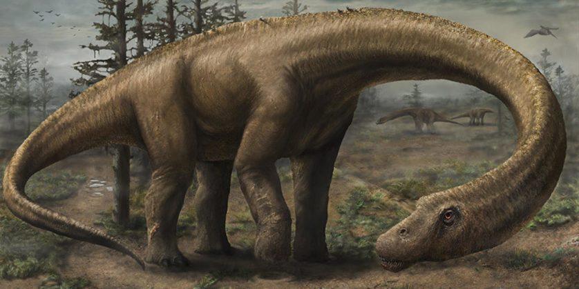 Dreadnoughtus 3