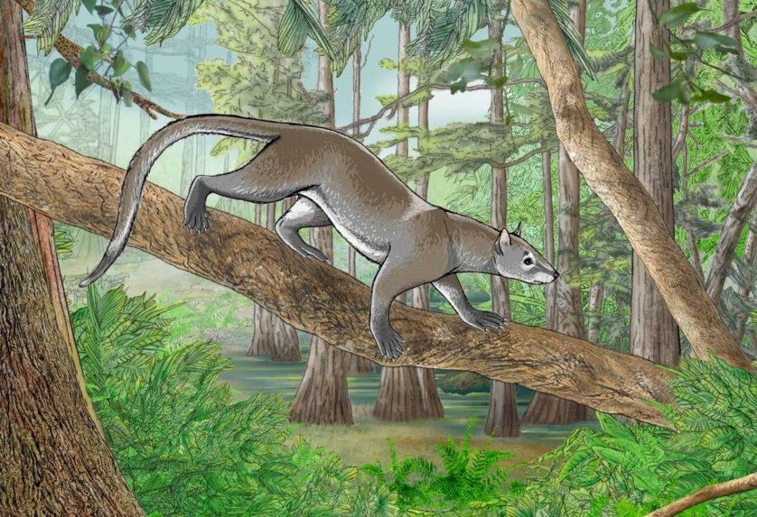 descobertas pré-históricas incríveis 10
