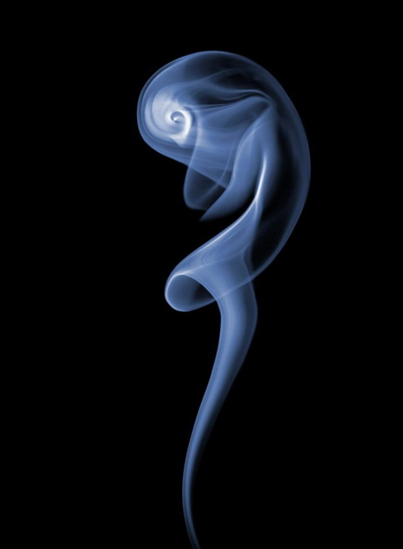 fumaca fotos herbrich (5)