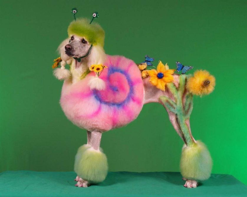 obras de arte controversas que utilizam animais 2-